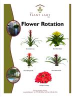 Flowering Rotation